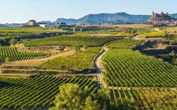 Excursión a Vitoria y La Rioja desde Bilbao