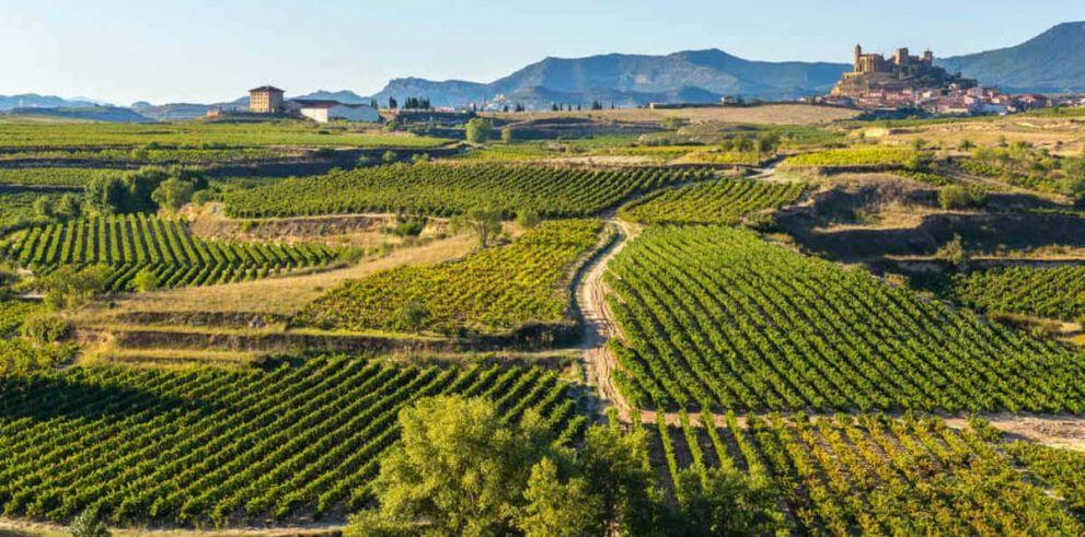 Excursión a La Rioja y Vitoria