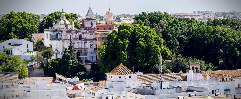 Excursión a Doñana y Sanlúcar