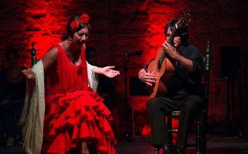 Tour Flamenco en Jerez: Visita guiada, espectáculo Flamenco, Vino y Tapas