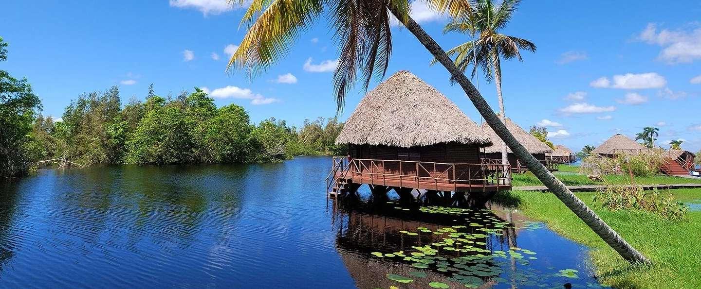 Excursión a la Ciénaga de Zapata y Guamá desde La Habana