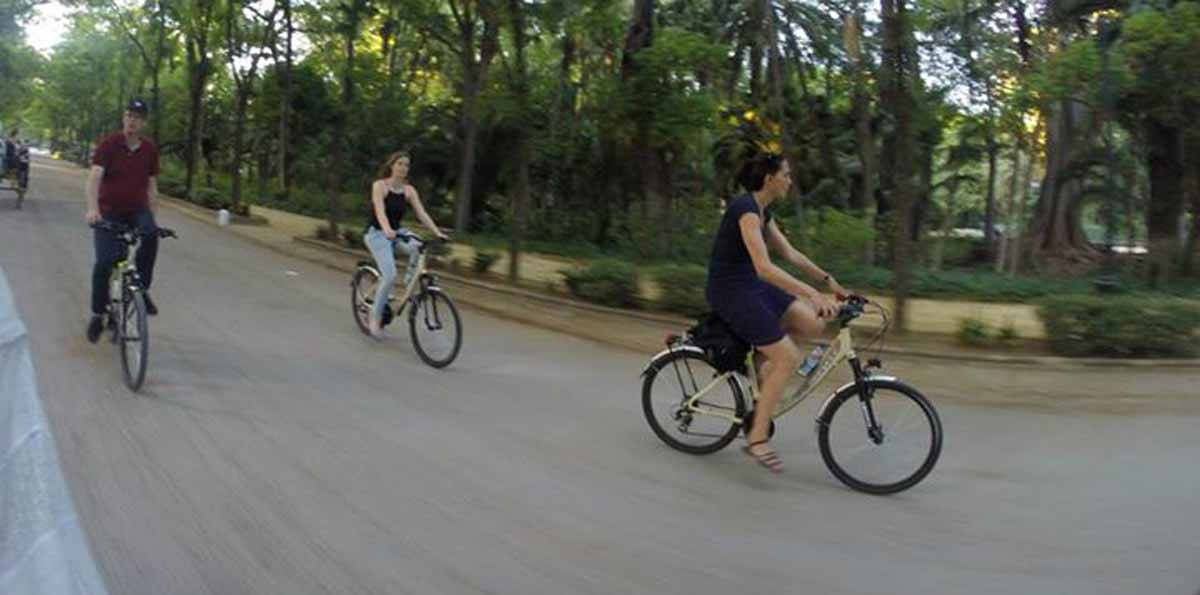 Seville Bike Rental