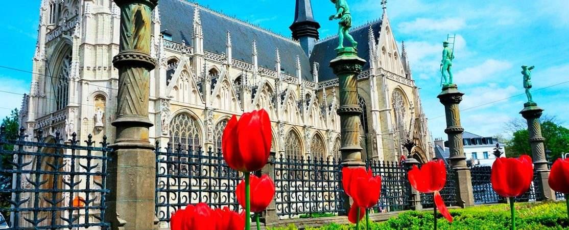 Tour a Bruselas desde Ámsterdam
