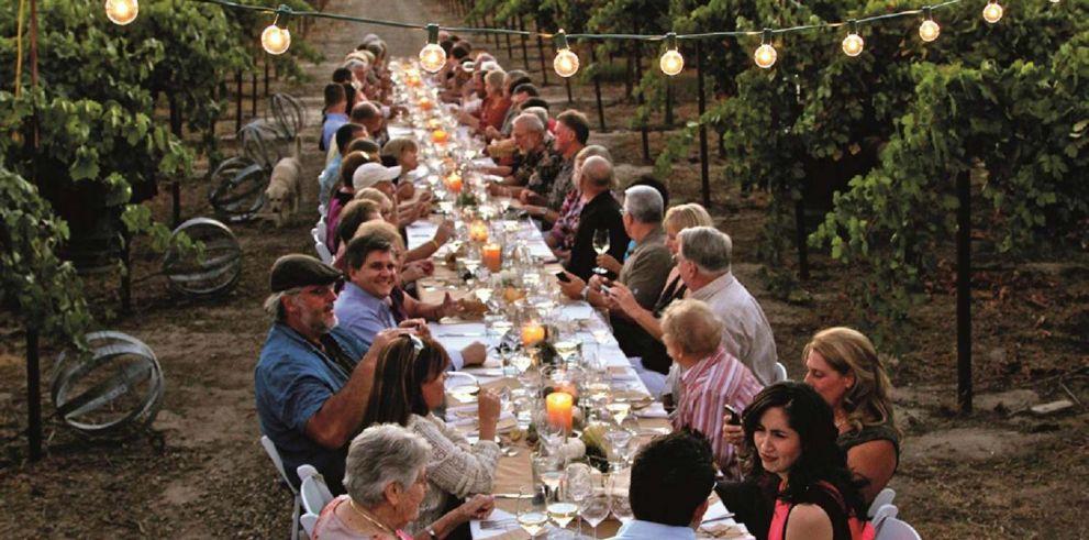Cena en un viñedo de la Toscana