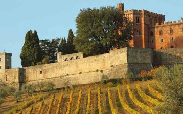 Chianti Half Day Tour from Siena
