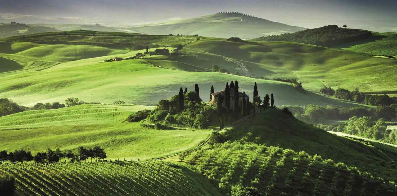 Tour a San Gimignano, Chianti y Montalcino desde Siena