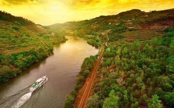 Douro Valley full day Tour from Porto