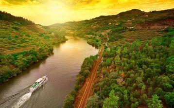 Excursión al Valle del Duero  desde Oporto