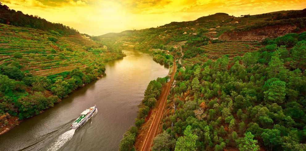 Douro Valley full day Tour from Porto
