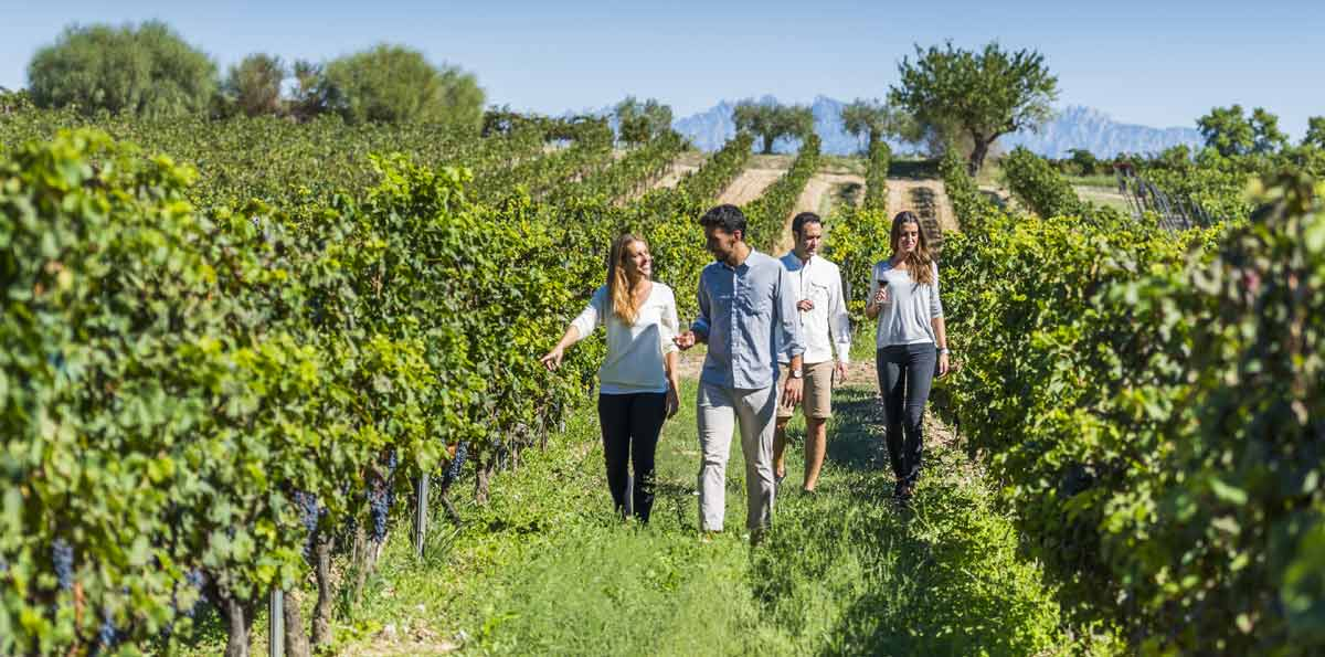 Torres wine cellars, Montserrat and Sitges Tour from Barcelona