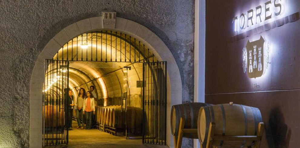 Small Group: Wine and Cava VIP Tour from Barcelona