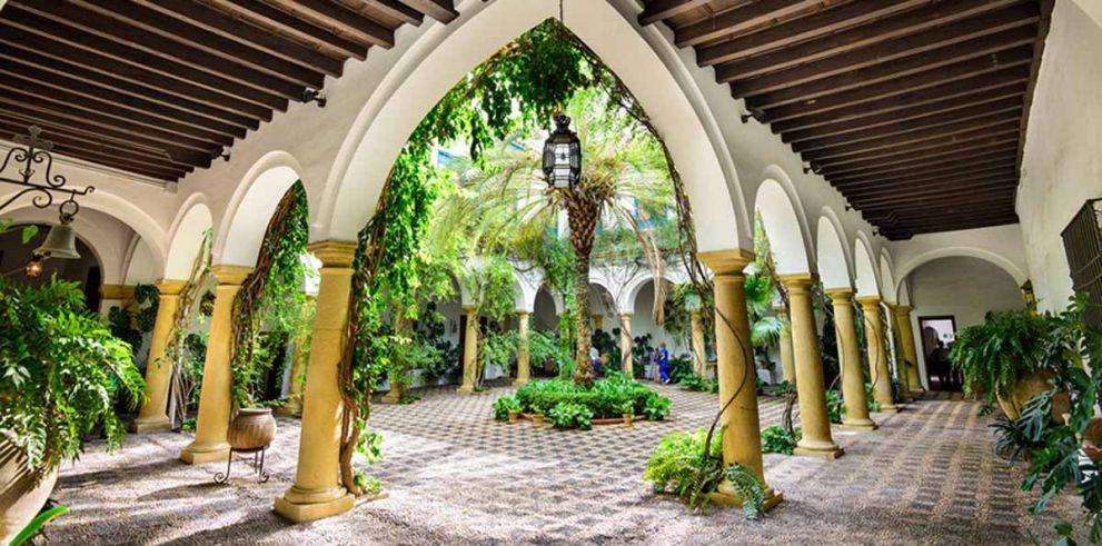Visita guiada Patios de Viana con entrada al Palacio