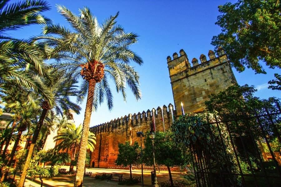 Tour de Tapas en Córdoba