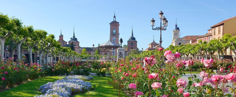 Free Tour por Alcalá de Henares