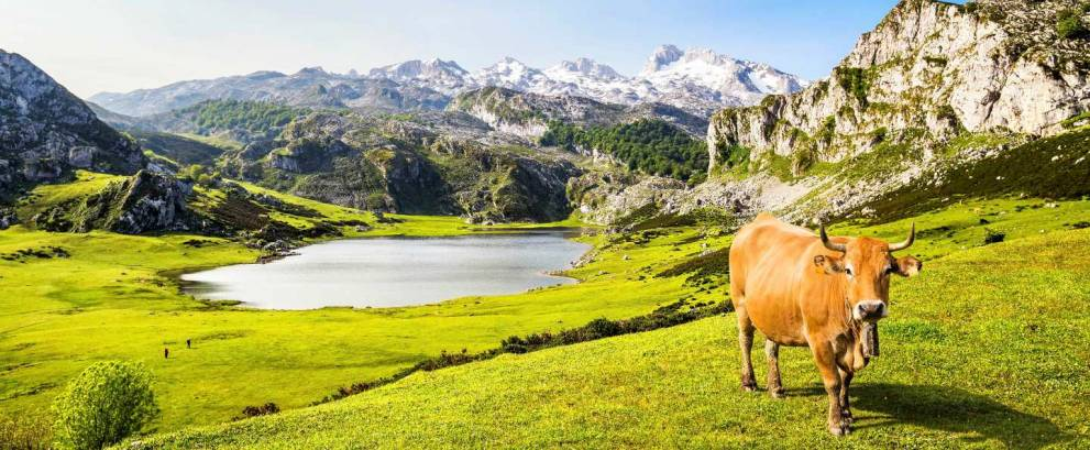 Covadonga Lakes Tour by 4x4