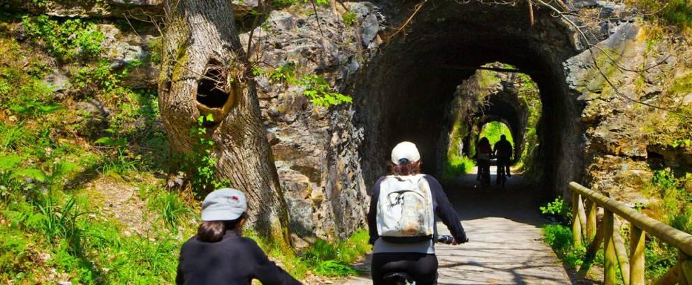 Alquiler de bicicletas en la Senda del Oso