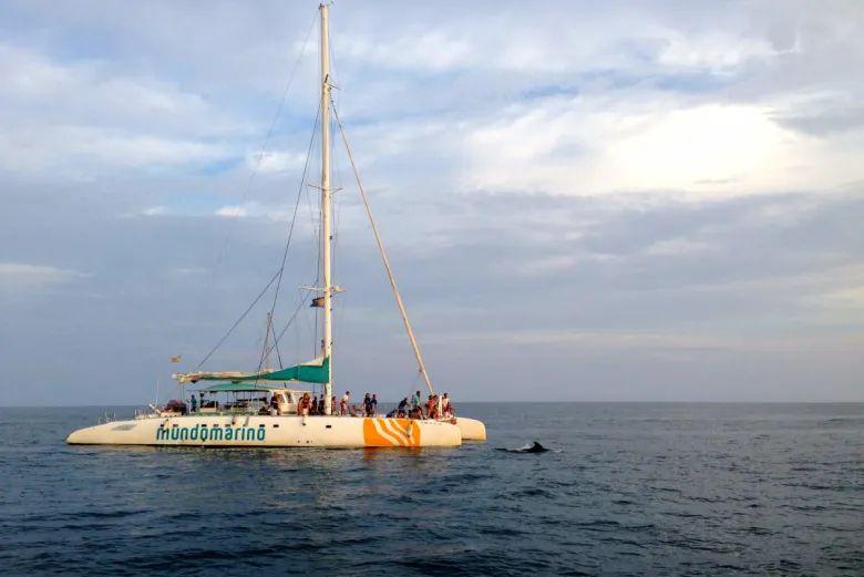 Catamarán velero Málaga