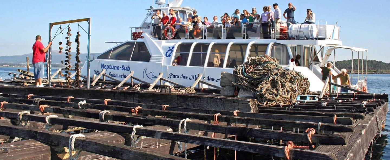 Paseo en barco de los mejillones en O Grove