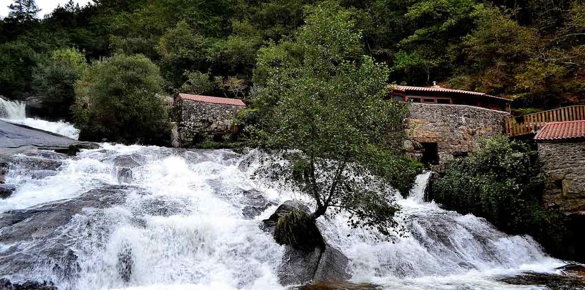 Excursión a las Rías Baixas desde Santiago