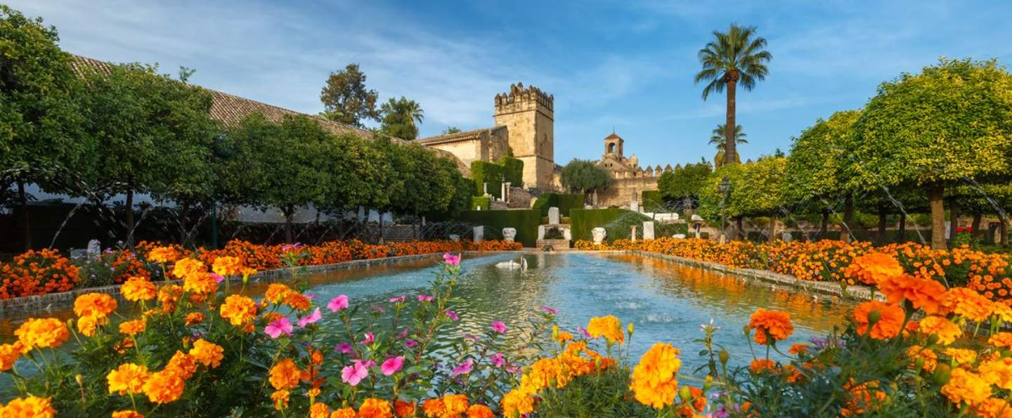 Private tour from Seville to Cordoba