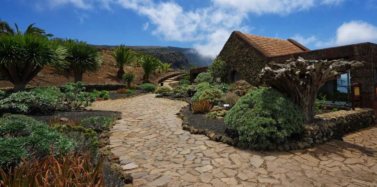Excursión a El Hierro desde Tenerife