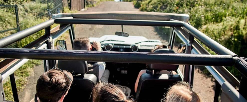 Jeep Safari en El Hierro