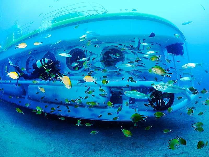 Excursión en submarino en Tenerife Sur