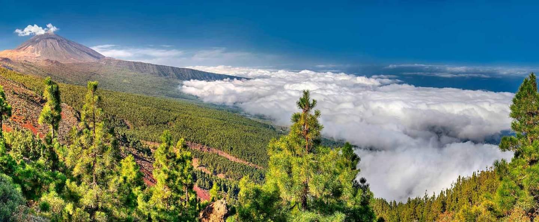 Excursión al Teide desde Puerto de la Cruz