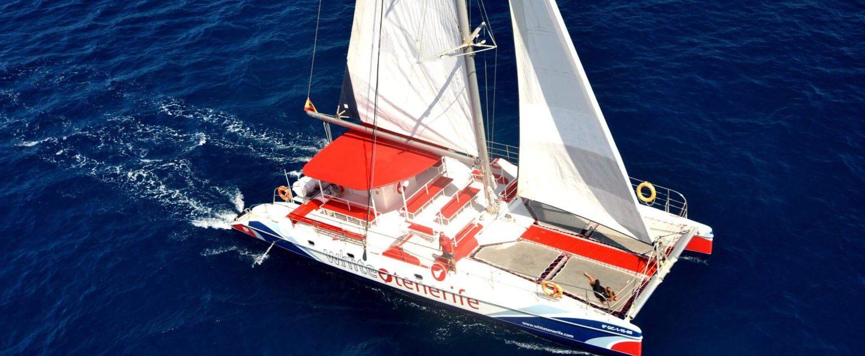 Tour en catamarán con avistamiento de cetáceos