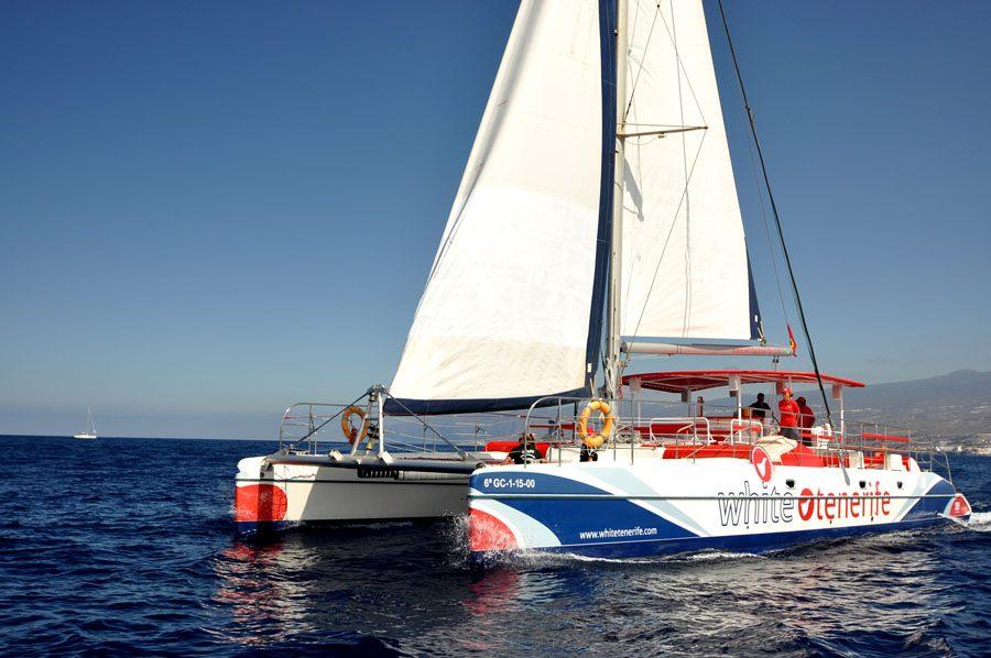 Tour en catamarán en Tenerife