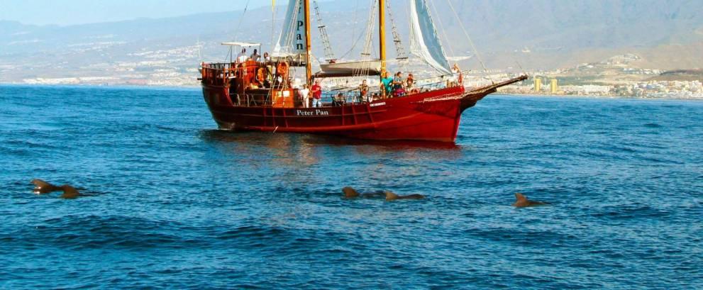 Excursión en barco Peter Pan en Tenerife
