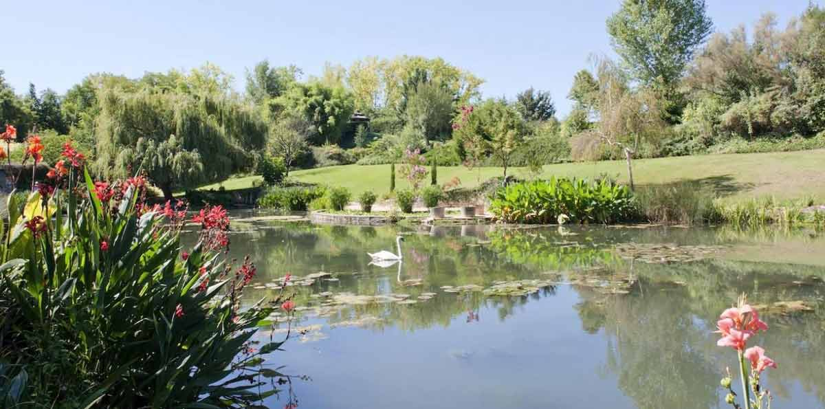 Trip to Claude Monet's Home and Gardens in Giverny