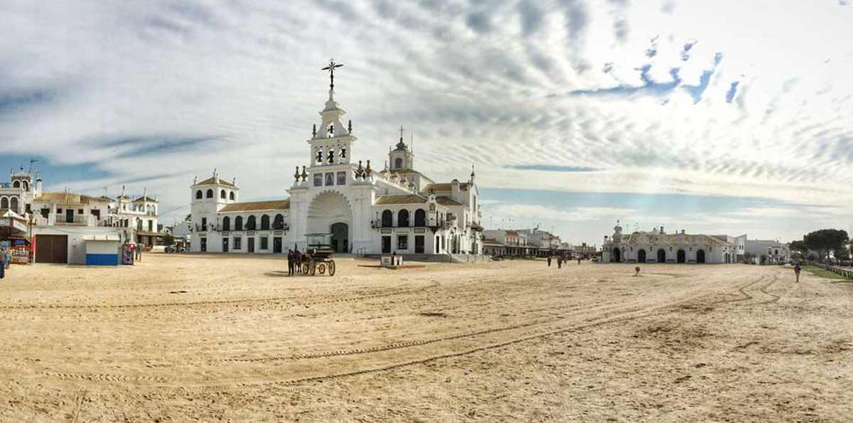 Doñana National Park Tour in Small Group from Seville