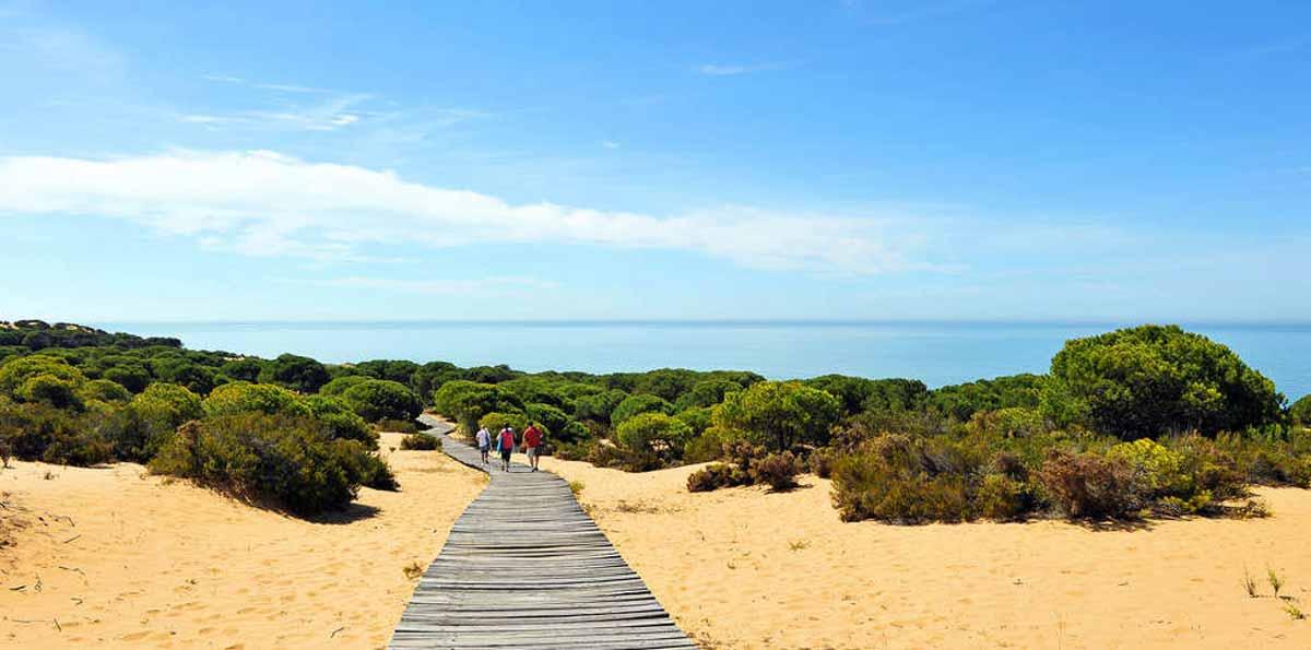 Excursión Privada al Parque Nacional de Doñana desde Sevilla