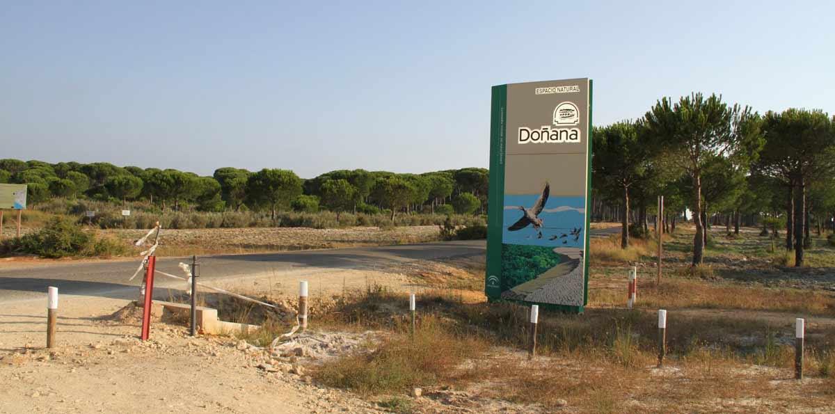 Excursión a Doñana en 2 días