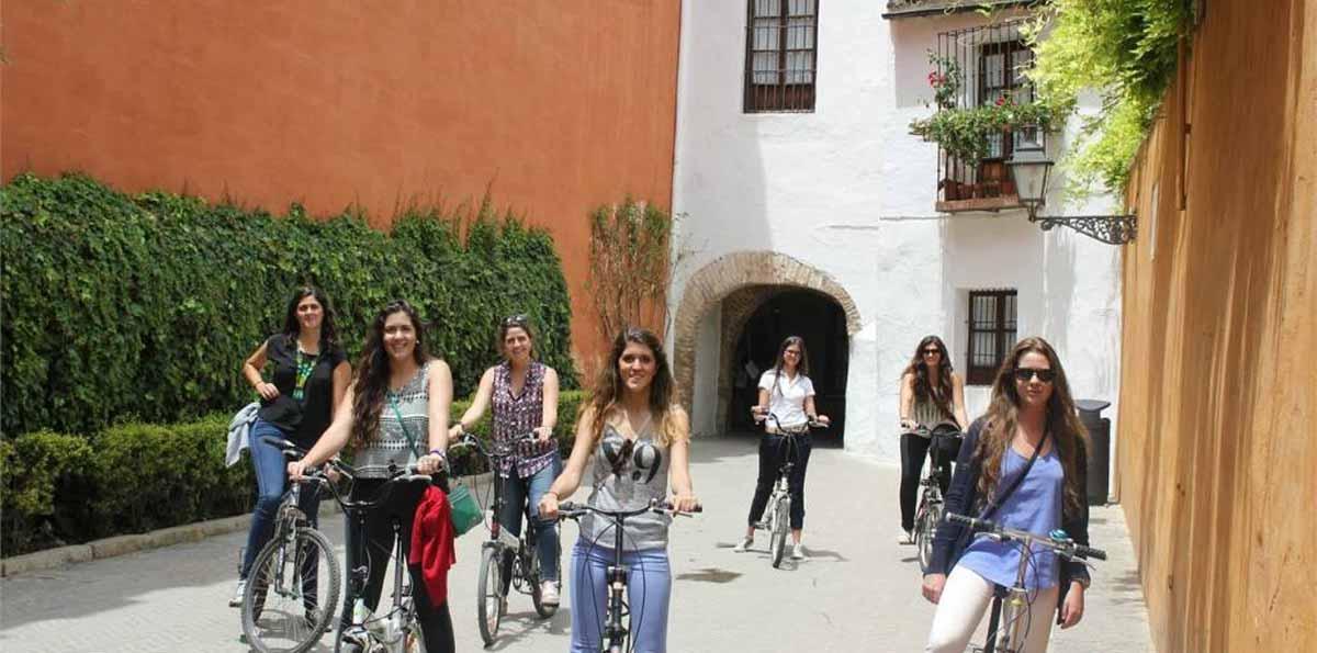 Sevilla: Tour en bicicleta de 1 día