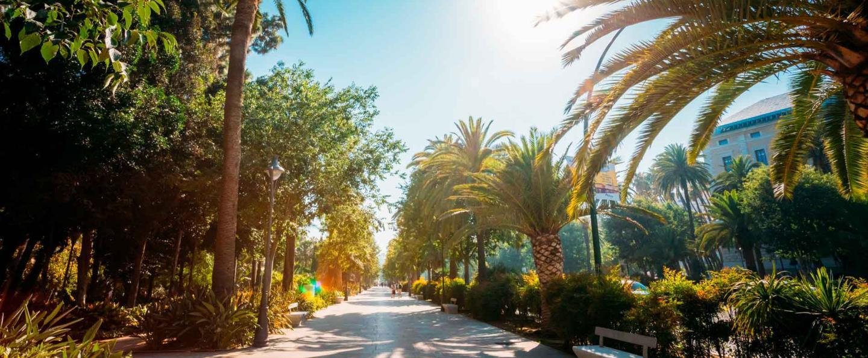 Tour Gratis por Málaga al atardecer